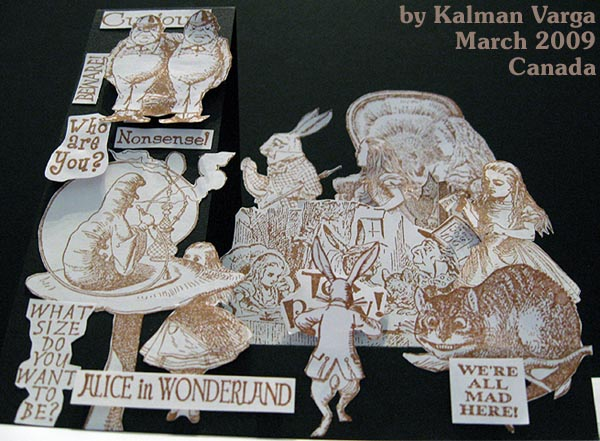 Alice's world in 3-D by Kalman Varga in Canada