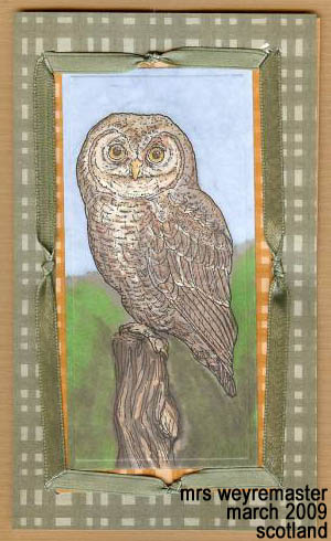 Elf Owl Card - Mrs Weyremaster - March 2009