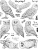 Owls Unmounted Rubber Stamp Sheet